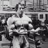 HST - Hypertrophy specific training